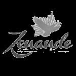 Zenande-logo-g